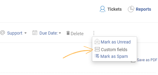 Click on More and select the Custom Fields option.