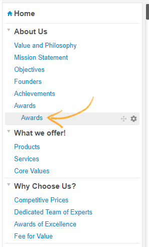 """To move, Click and Drag the synced page in this case """"Awards"""" to the desired location"""