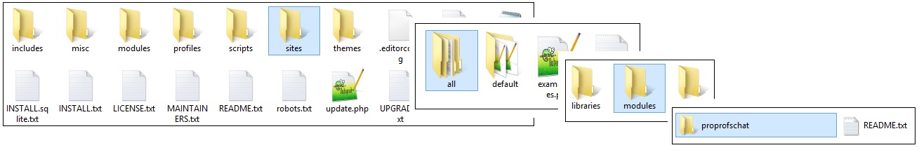 Copy and paste the proprofschat folder