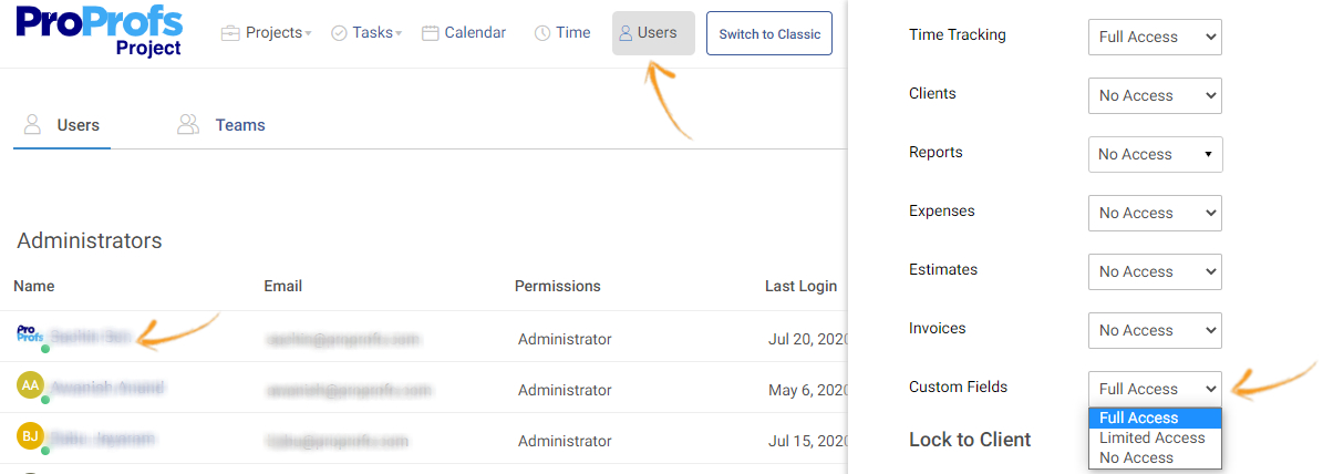Grant users access to custom fields